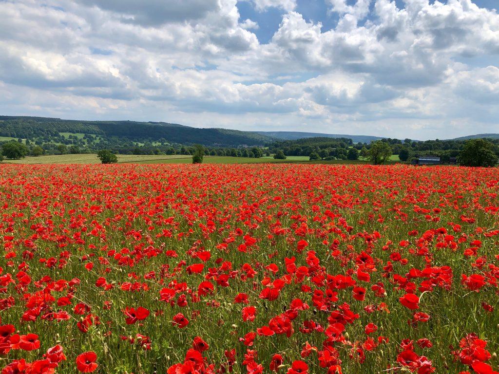 Derbyshire Walking Holiday